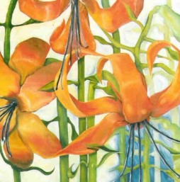 'Christmas Lily's' - SOLD
