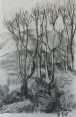 Discover Drawing - experimenting with charcoal