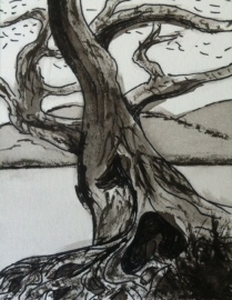 Indian Ink Wash & Line