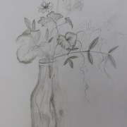 A beginner's workshop in drawing flowers - Beautiful Blooms with NZ Artist Gill Allen - Day 1